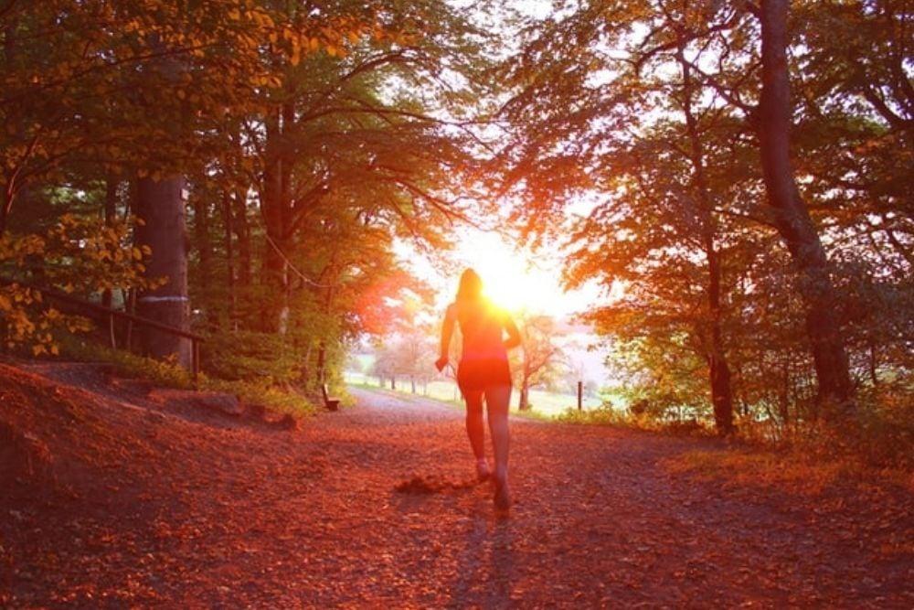 Runner_woodland_trees